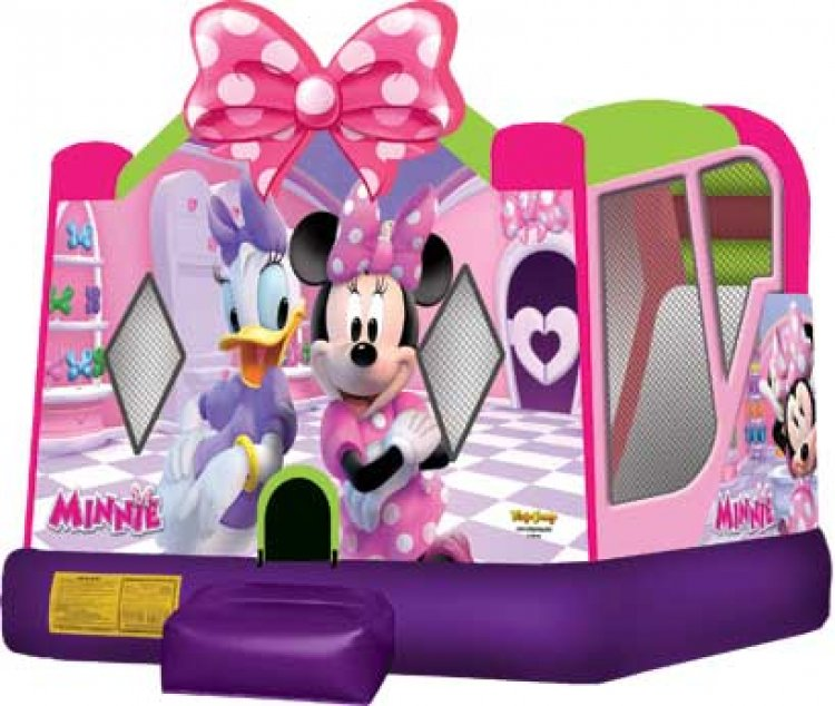 Minnie Mouse With WaterSlide $180
